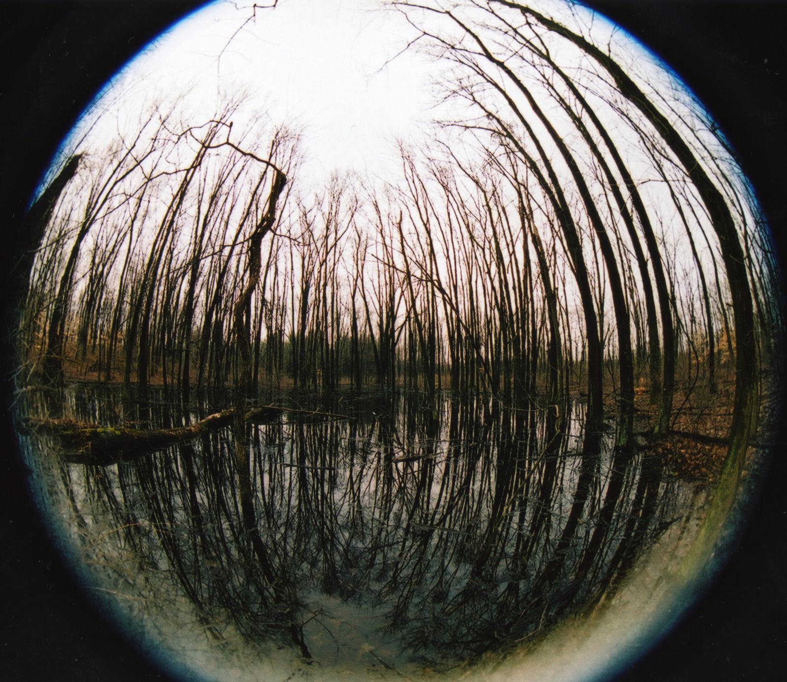 Fisheye Camera Lens View